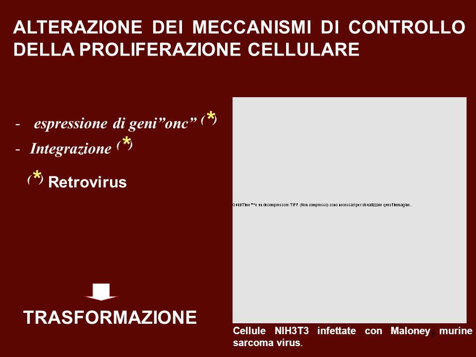 ALTERAZIONE DEI MECCANISMI DI CONTROLLO DELLA PROLIFERAZIONE CELLULARE