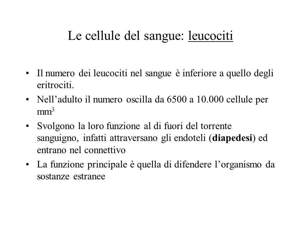 Le cellule del sangue: leucociti