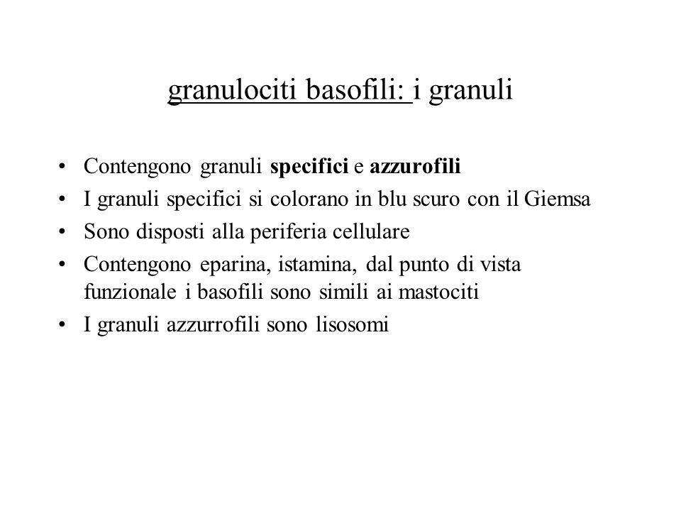 granulociti basofili: i granuli