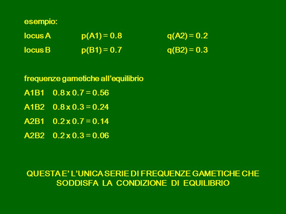 esempio: locus A p(A1) = 0.8 q(A2) = 0.2. locus B p(B1) = 0.7 q(B2) = 0.3. frequenze gametiche all'equilibrio.
