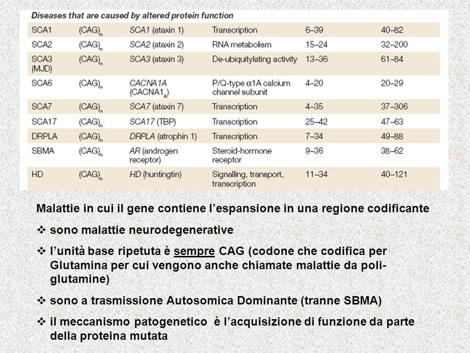 Malattie in cui il gene contiene l'espansione in una regione codificante