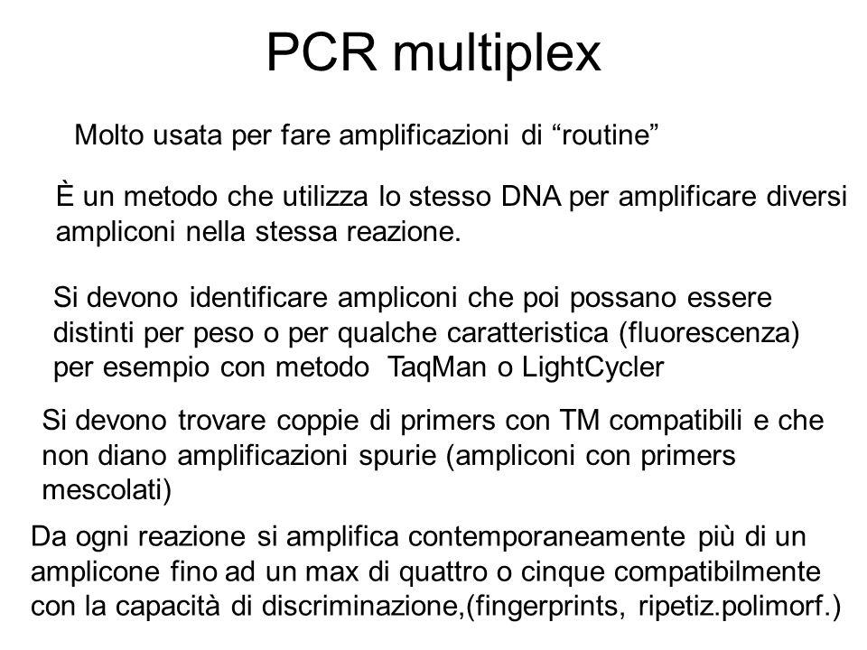 PCR multiplex Molto usata per fare amplificazioni di routine