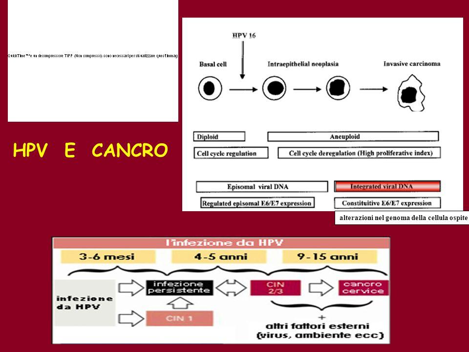HPV E CANCRO alterazioni nel genoma della cellula ospite