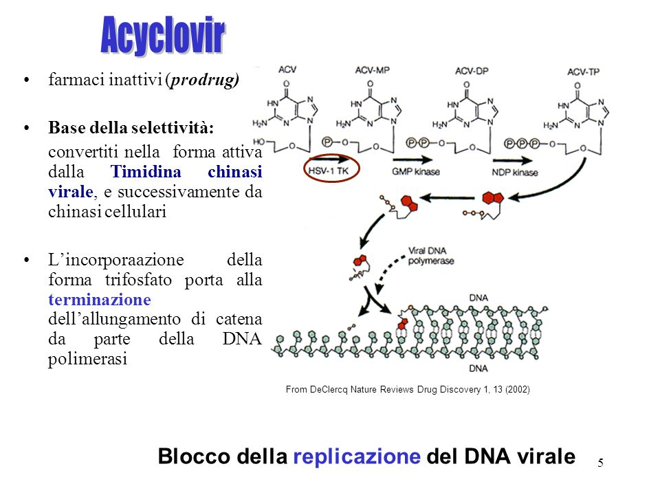 Acyclovir Blocco della replicazione del DNA virale