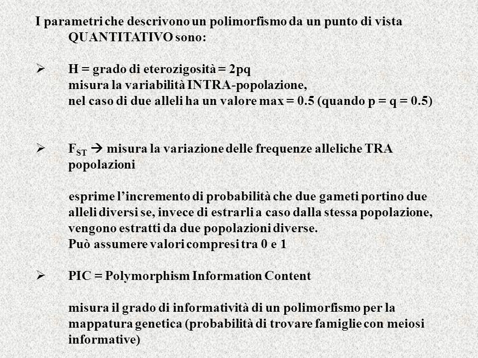 I parametri che descrivono un polimorfismo da un punto di vista QUANTITATIVO sono: