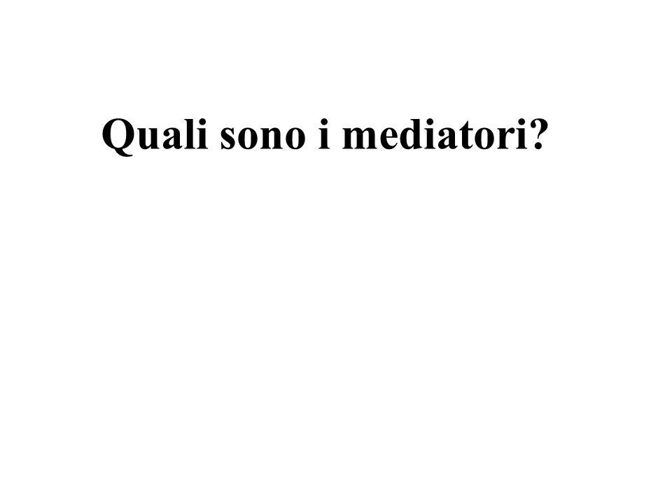 Quali sono i mediatori