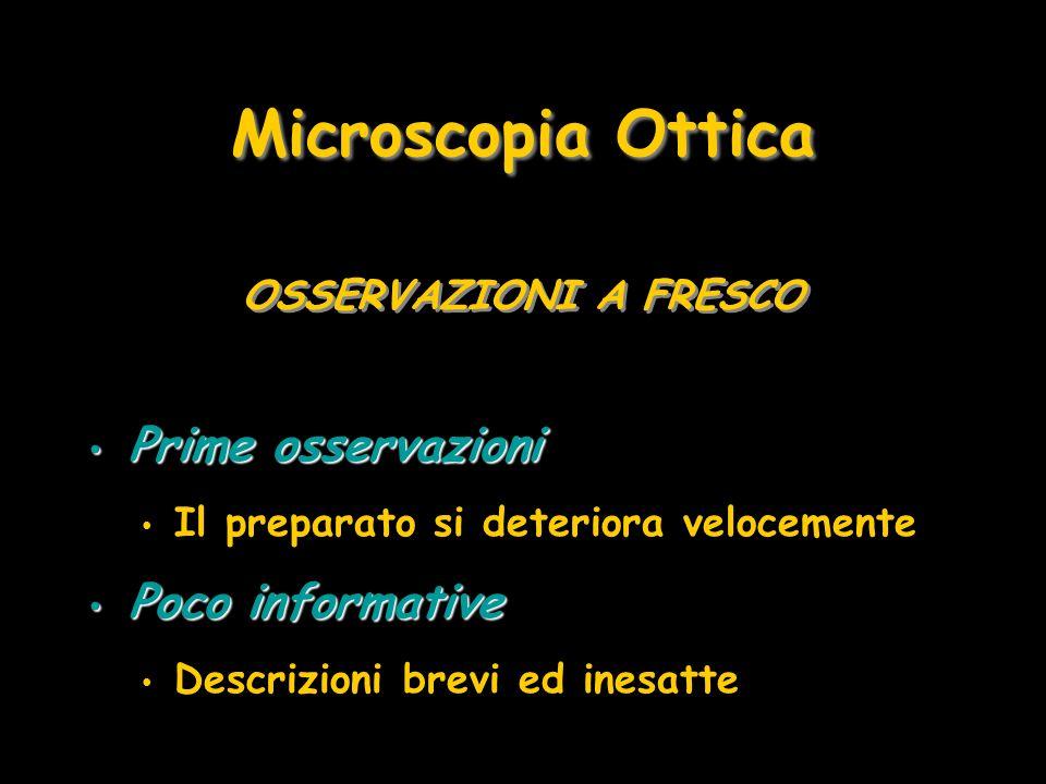 Microscopia Ottica Prime osservazioni Poco informative