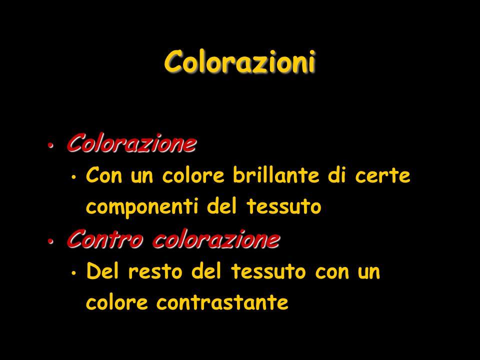 Colorazioni Colorazione Contro colorazione