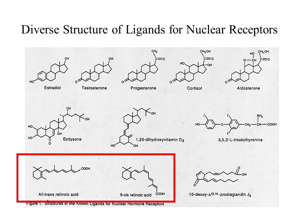 Diverse Structure of Ligands for Nuclear Receptors
