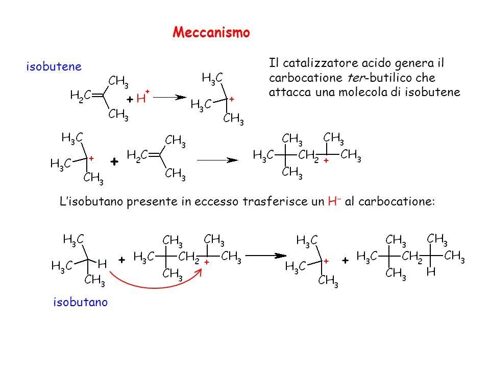 Meccanismo Il catalizzatore acido genera il carbocatione ter-butilico che attacca una molecola di isobutene.