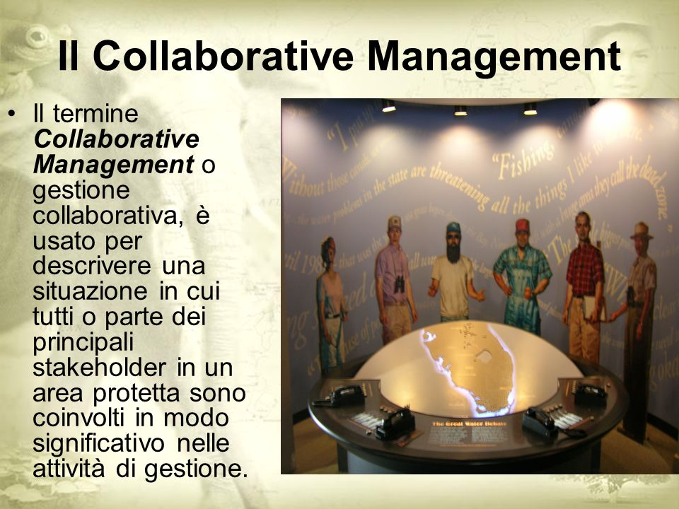 Il Collaborative Management