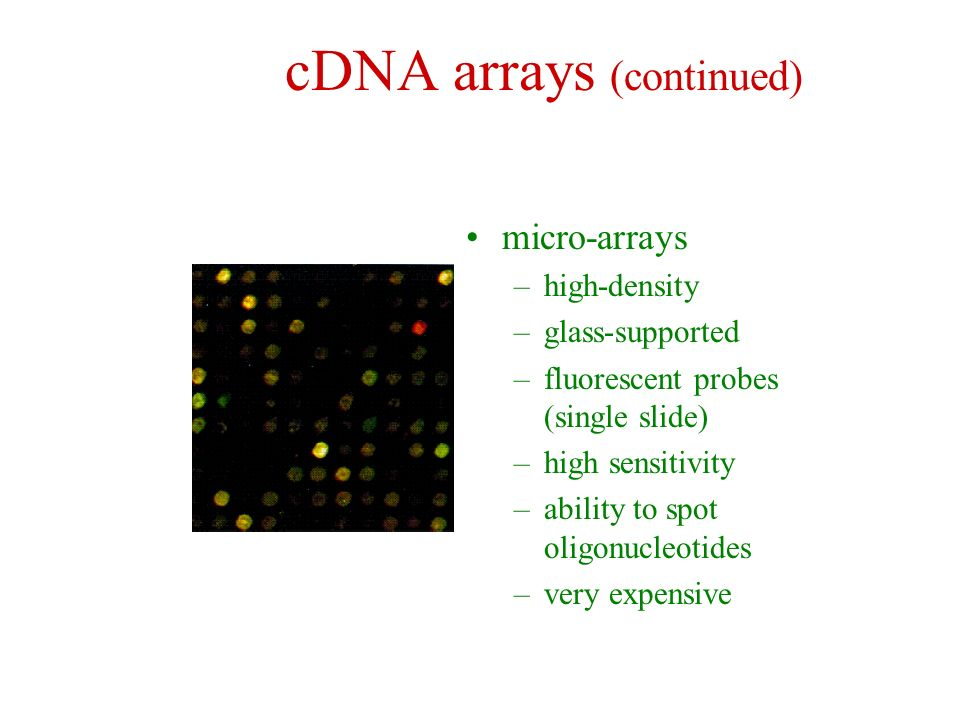 cDNA arrays (continued)