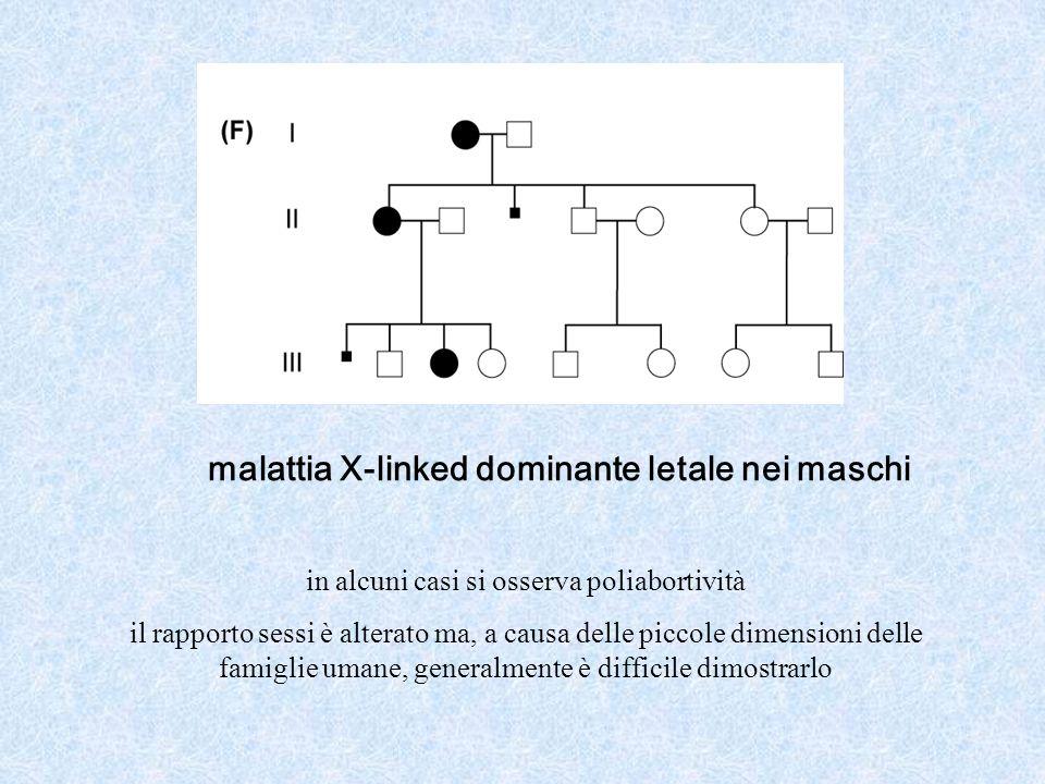 malattia X-linked dominante letale nei maschi