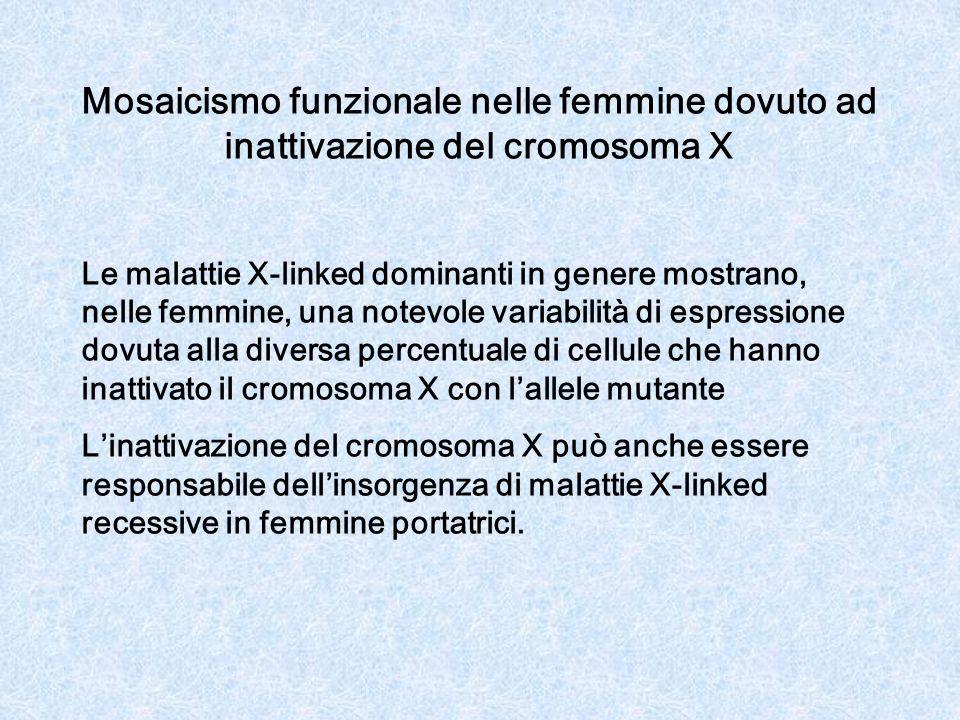 Mosaicismo funzionale nelle femmine dovuto ad inattivazione del cromosoma X