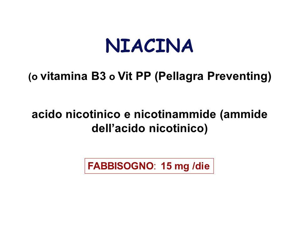 NIACINA (o vitamina B3 o Vit PP (Pellagra Preventing) acido nicotinico e nicotinammide (ammide dell'acido nicotinico)