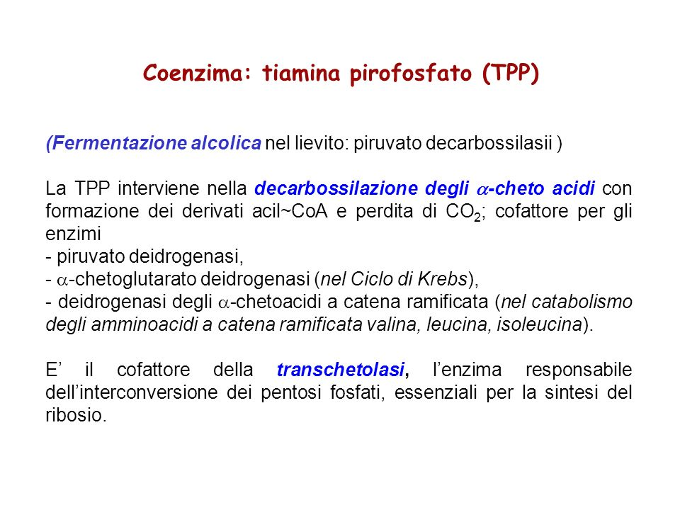 Coenzima: tiamina pirofosfato (TPP)