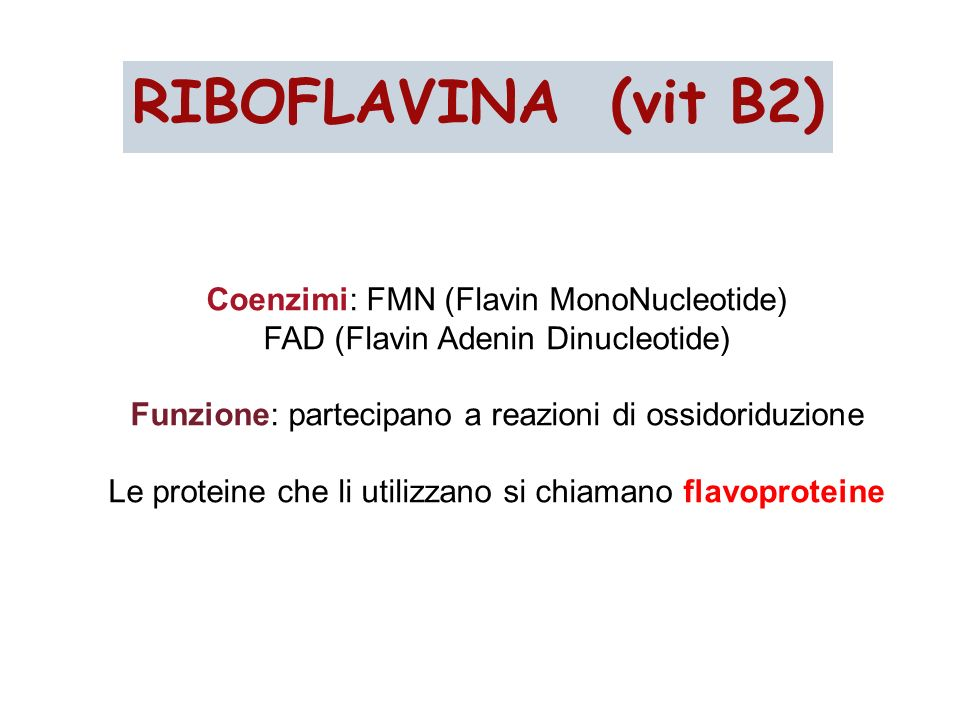 RIBOFLAVINA (vit B2) Coenzimi: FMN (Flavin MonoNucleotide)