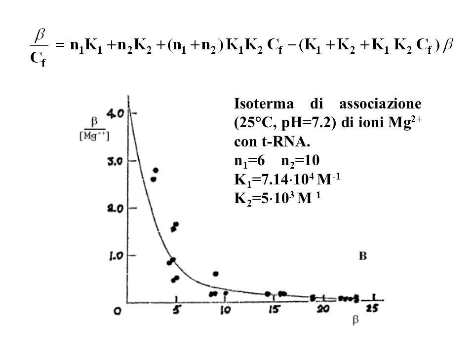 Isoterma di associazione (25°C, pH=7.2) di ioni Mg2+ con t-RNA.