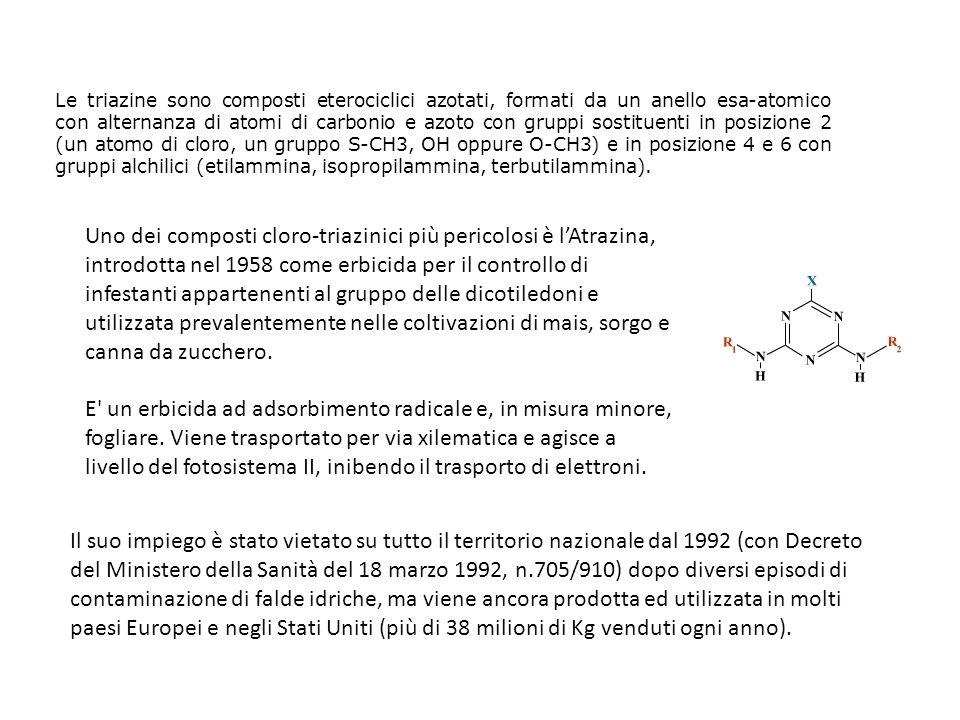 Le triazine sono composti eterociclici azotati, formati da un anello esa-atomico con alternanza di atomi di carbonio e azoto con gruppi sostituenti in posizione 2 (un atomo di cloro, un gruppo S-CH3, OH oppure O-CH3) e in posizione 4 e 6 con gruppi alchilici (etilammina, isopropilammina, terbutilammina).