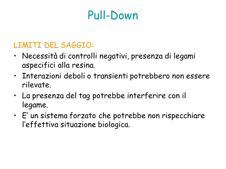 Pull-Down LIMITI DEL SAGGIO: