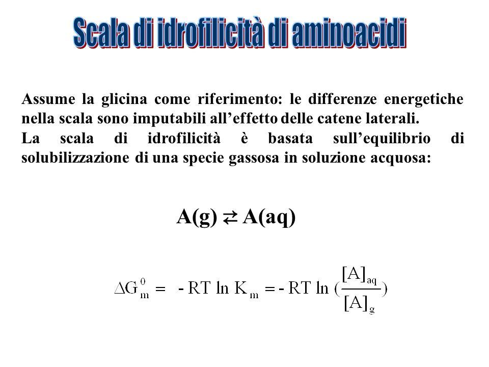 Scala di idrofilicità di aminoacidi