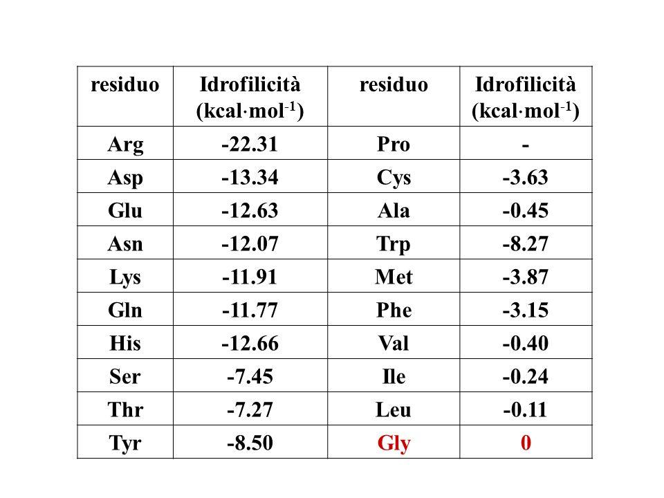 residuo Idrofilicità. (kcalmol-1) Arg. -22.31. Pro. - Asp. -13.34. Cys. -3.63. Glu. -12.63.