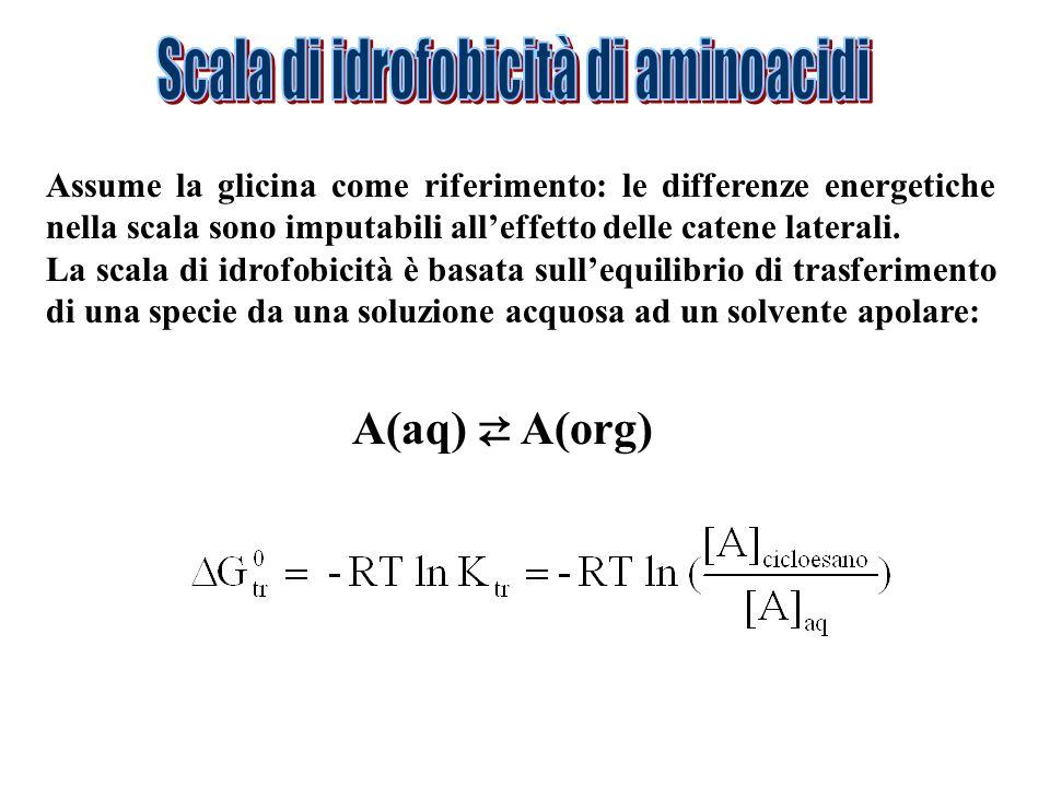 Scala di idrofobicità di aminoacidi