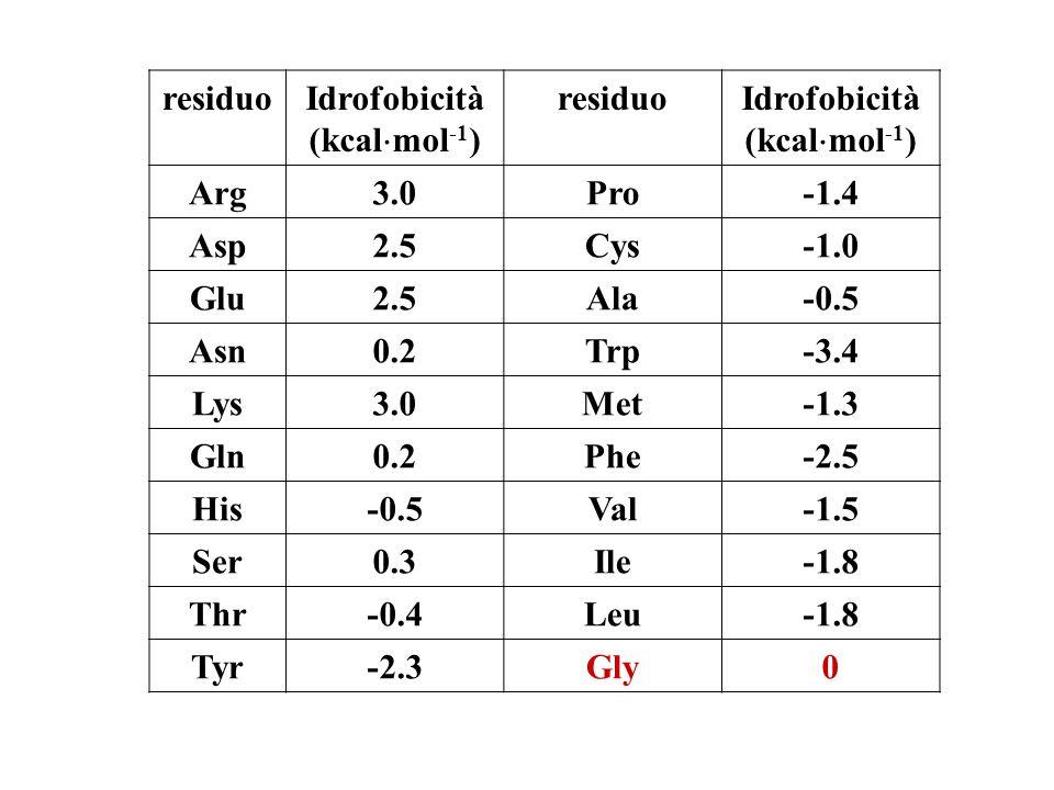 residuo Idrofobicità. (kcalmol-1) Arg. 3.0. Pro. -1.4. Asp. 2.5. Cys. -1.0. Glu. Ala. -0.5.