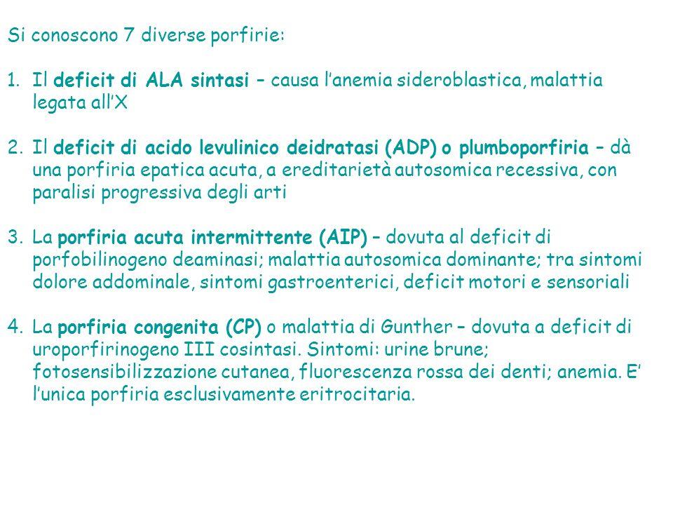 Si conoscono 7 diverse porfirie: