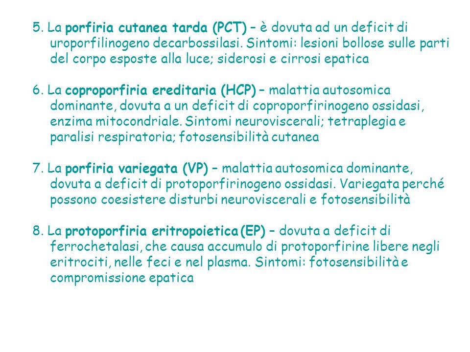 5. La porfiria cutanea tarda (PCT) – è dovuta ad un deficit di uroporfilinogeno decarbossilasi. Sintomi: lesioni bollose sulle parti del corpo esposte alla luce; siderosi e cirrosi epatica