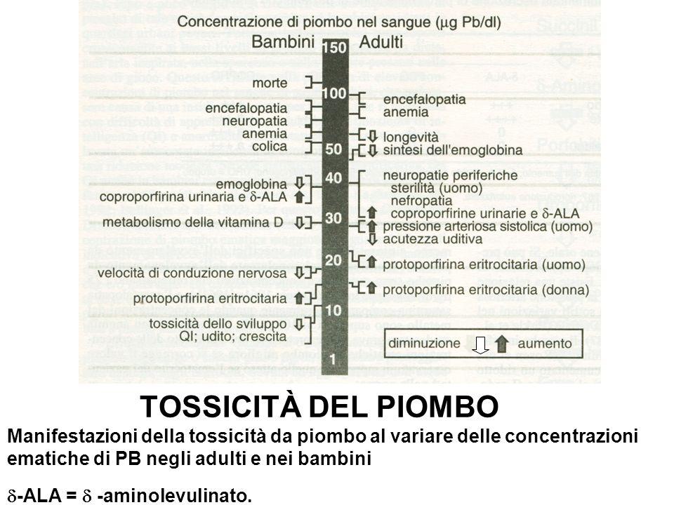 TOSSICITÀ DEL PIOMBO Manifestazioni della tossicità da piombo al variare delle concentrazioni ematiche di PB negli adulti e nei bambini -ALA =  -aminolevulinato.