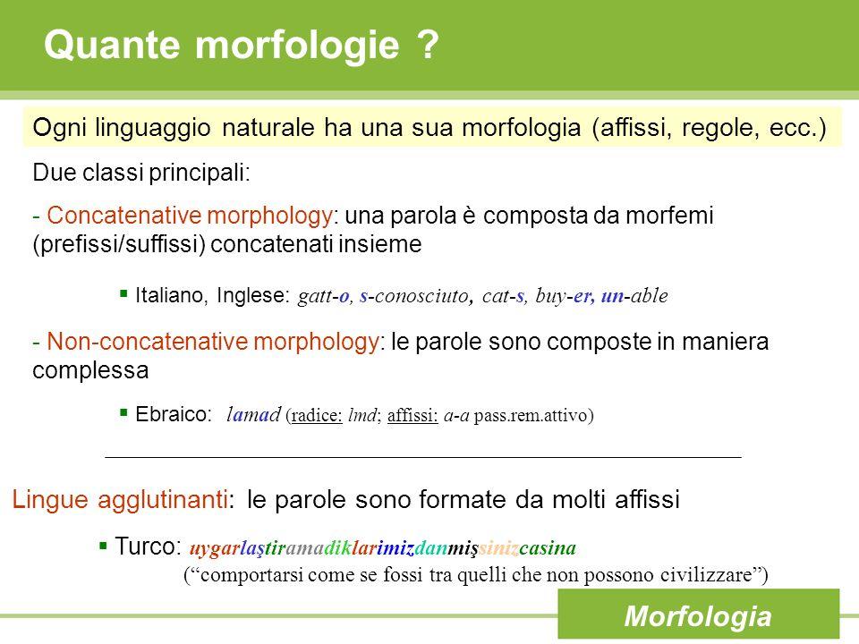 Quante morfologie Morfologia
