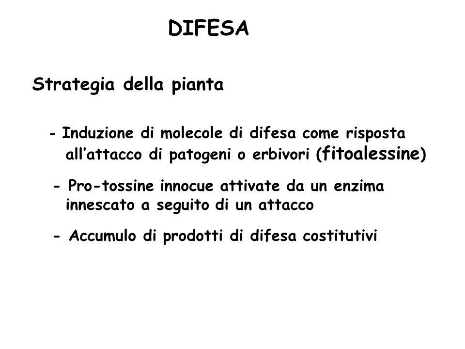 DIFESA Strategia della pianta