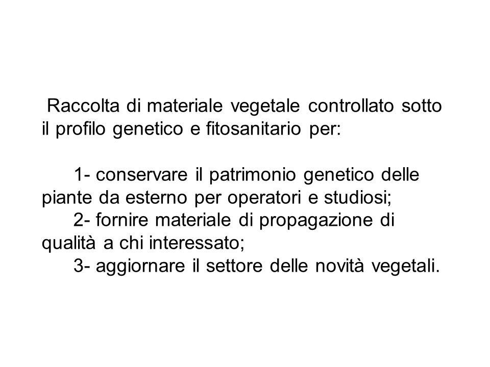Raccolta di materiale vegetale controllato sotto il profilo genetico e fitosanitario per: