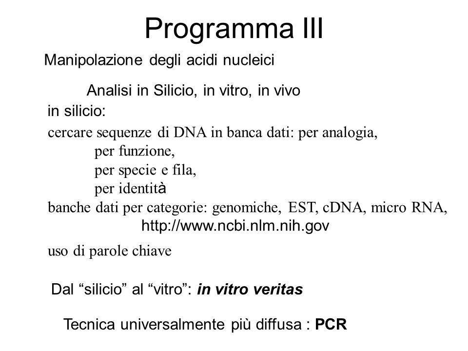 Programma III Manipolazione degli acidi nucleici