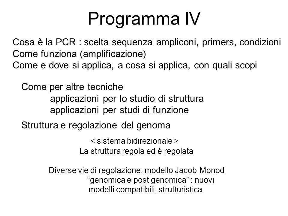 Programma IV Cosa è la PCR : scelta sequenza ampliconi, primers, condizioni. Come funziona (amplificazione)