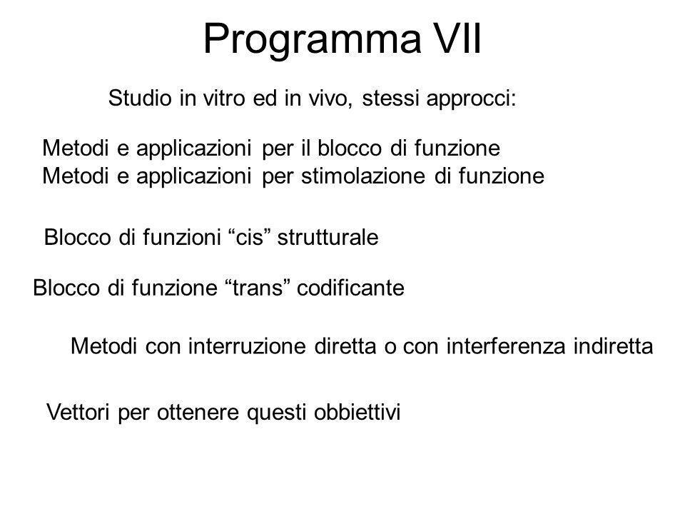 Programma VII Studio in vitro ed in vivo, stessi approcci: