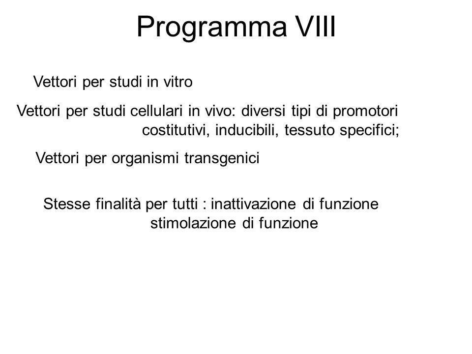 Programma VIII Vettori per studi in vitro
