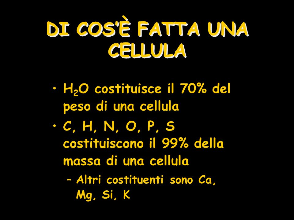 DI COS'È FATTA UNA CELLULA