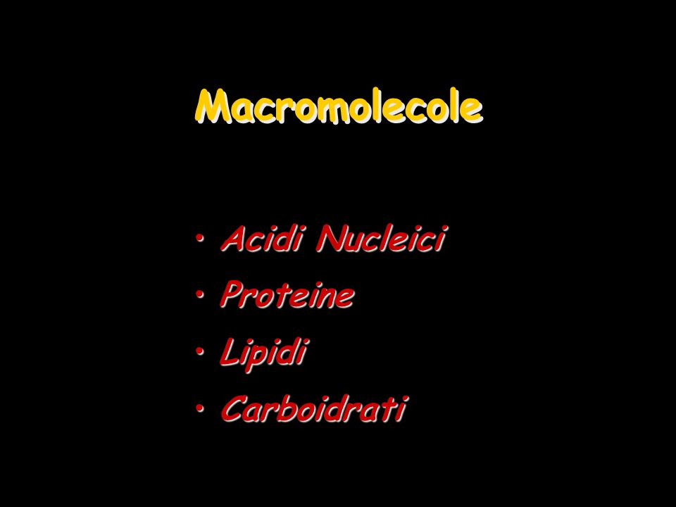 Macromolecole Acidi Nucleici Proteine Lipidi Carboidrati