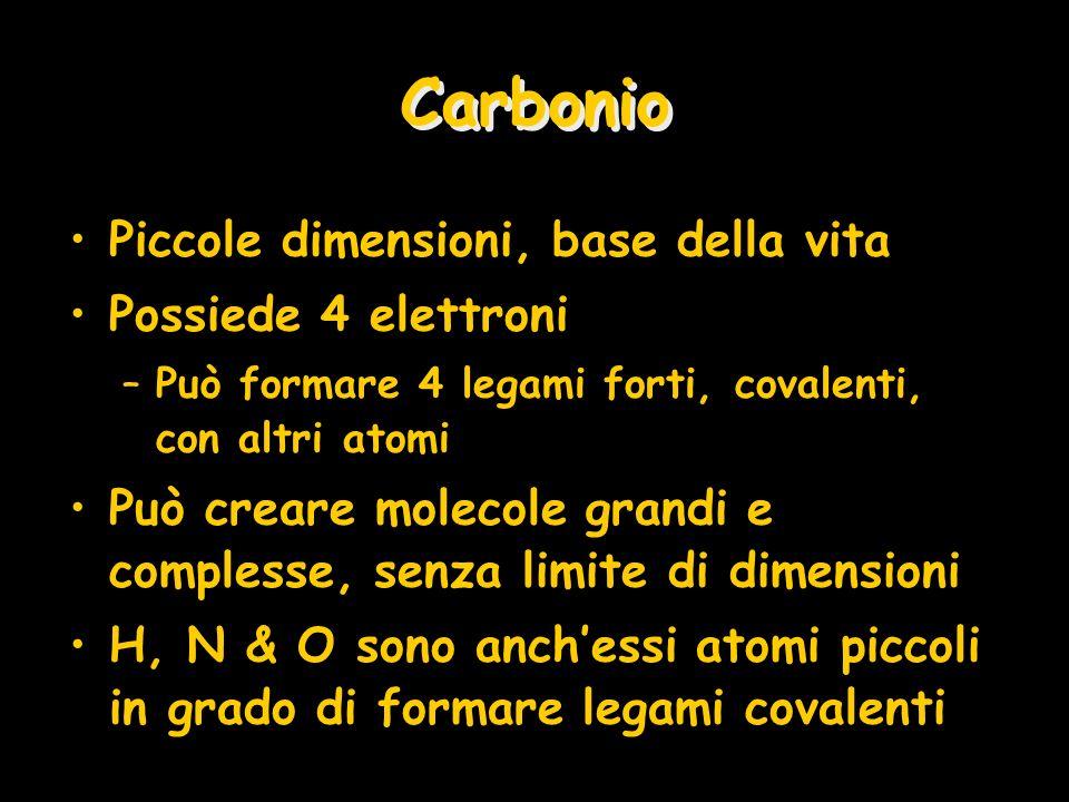 Carbonio Piccole dimensioni, base della vita Possiede 4 elettroni