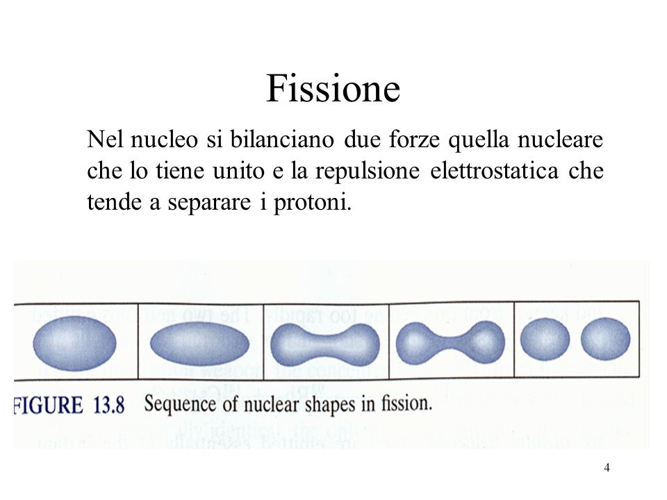 FissioneNel nucleo si bilanciano due forze quella nucleare che lo tiene unito e la repulsione elettrostatica che tende a separare i protoni.