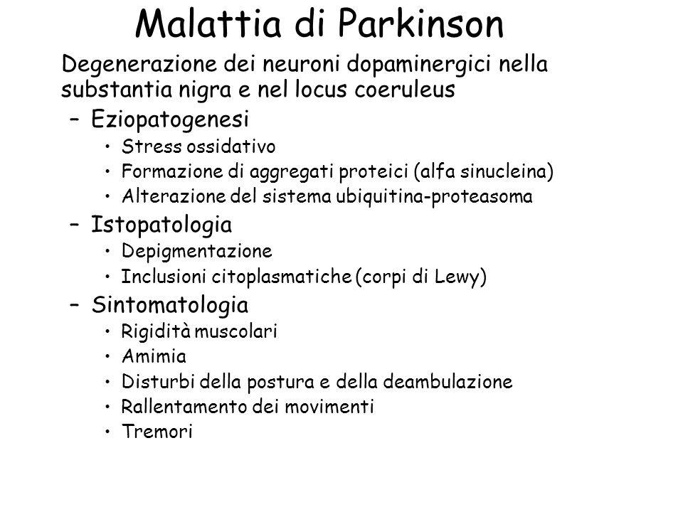 Malattia di Parkinson Degenerazione dei neuroni dopaminergici nella substantia nigra e nel locus coeruleus.