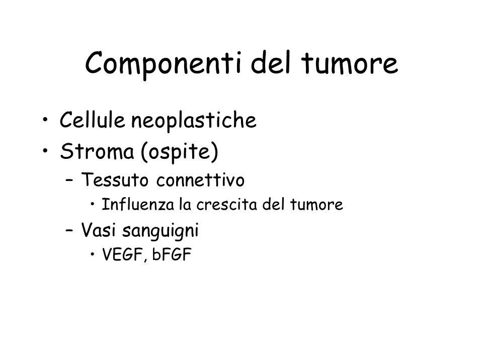 Componenti del tumore Cellule neoplastiche Stroma (ospite)