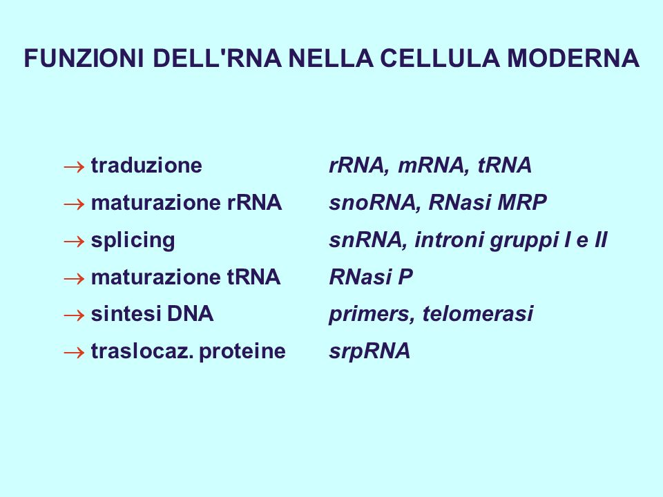FUNZIONI DELL RNA NELLA CELLULA MODERNA