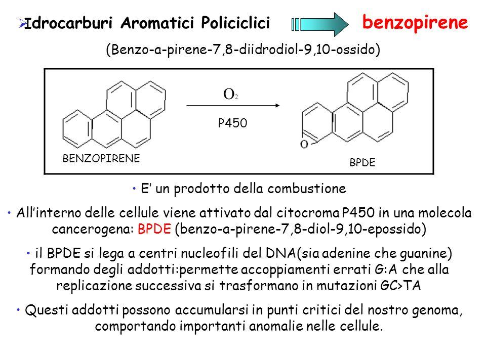 O2 Idrocarburi Aromatici Policiclici benzopirene