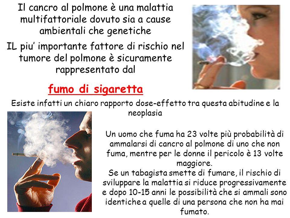 Il cancro al polmone è una malattia multifattoriale dovuto sia a cause ambientali che genetiche