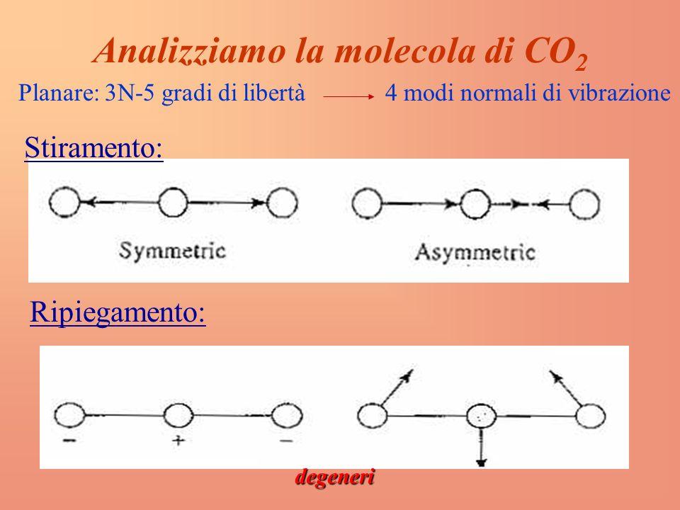 Analizziamo la molecola di CO2