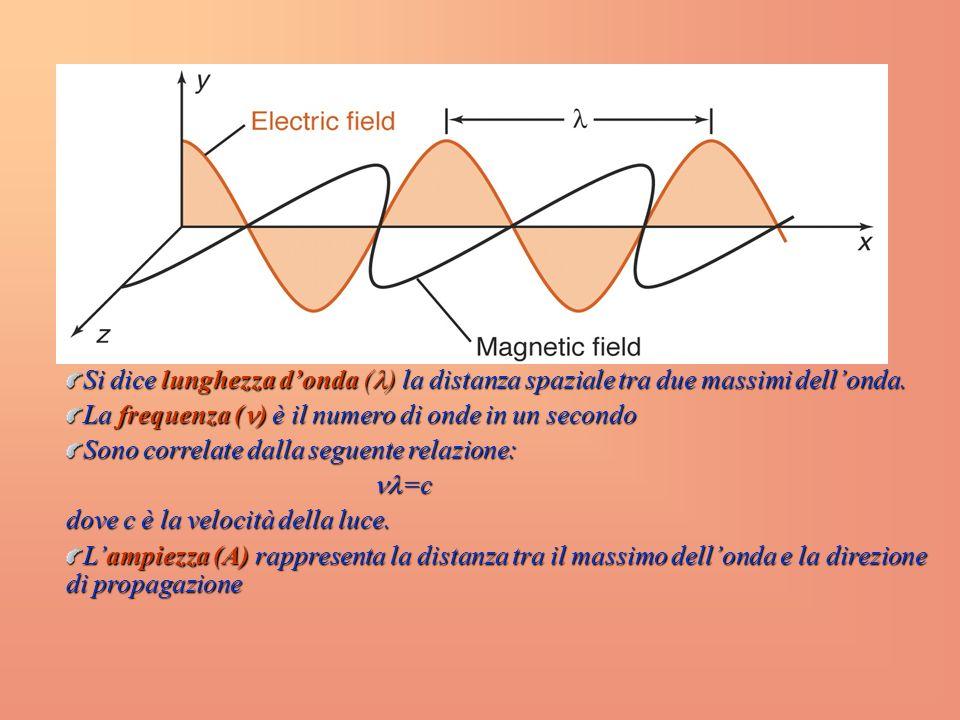 Si dice lunghezza d'onda () la distanza spaziale tra due massimi dell'onda.