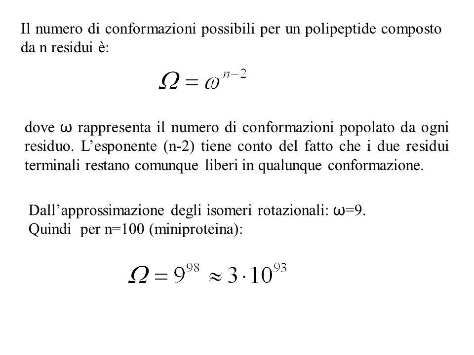 Il numero di conformazioni possibili per un polipeptide composto da n residui è: